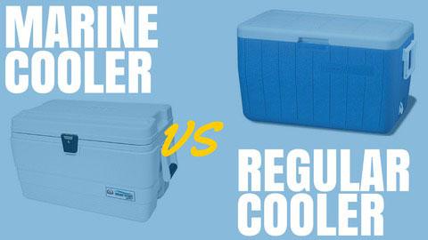 Marine Cooler Reviews