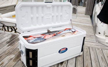 marine coolers reviews